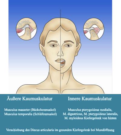 Ursachen von Kieferschmerzen: Die möglichen Ursachen Ihrer Schmerzen